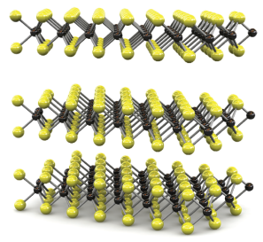 Transition metal dichalcogenide atomic layers